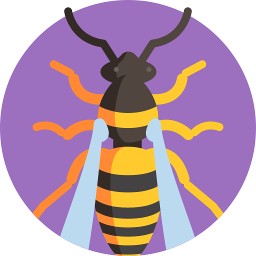 Wasp_Icon_01