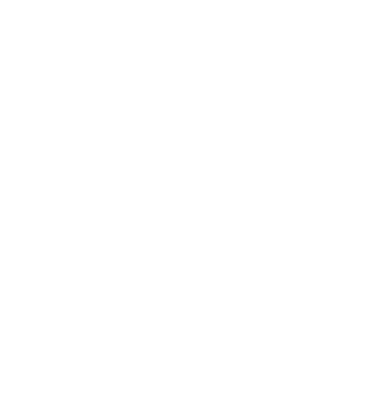 Bed_Bug_Solution_White_Icon